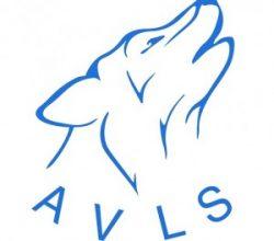 Favicon-AVLS-logo-300x284